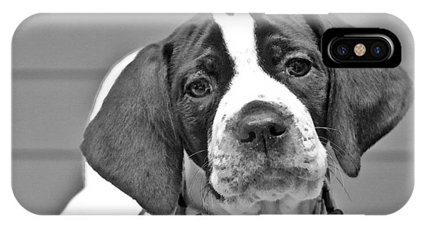 English Pointer Puppy Black And White IPhone Case