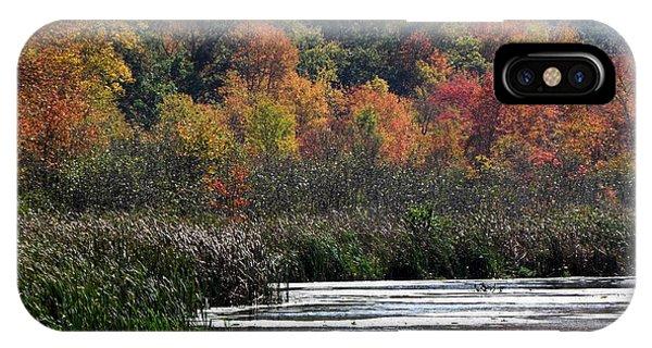 Even Swamps Have Beauty Phone Case by Kim Galluzzo Wozniak