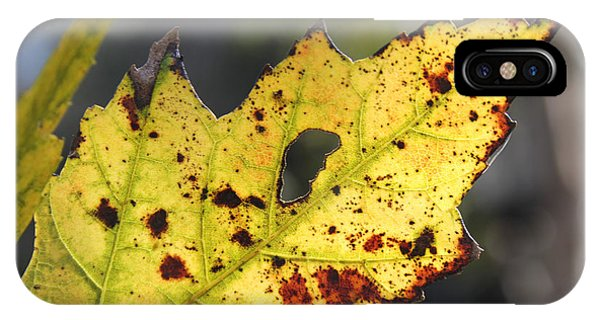 Face Of A Leaf IPhone Case