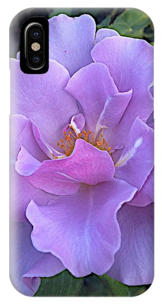 Faery Princess IPhone Case