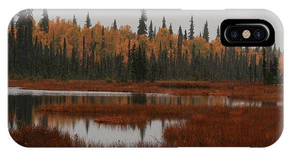 Fall In Alaska IPhone Case