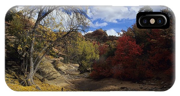 Fall In Zion High Country IPhone Case