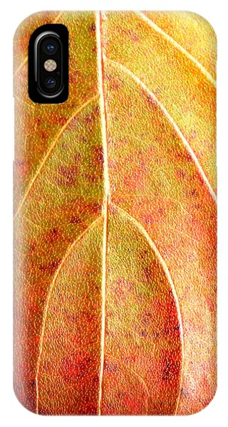 Fall Leaf Upclose IPhone Case
