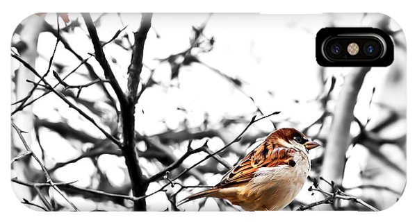 Fall Sparrow IPhone Case