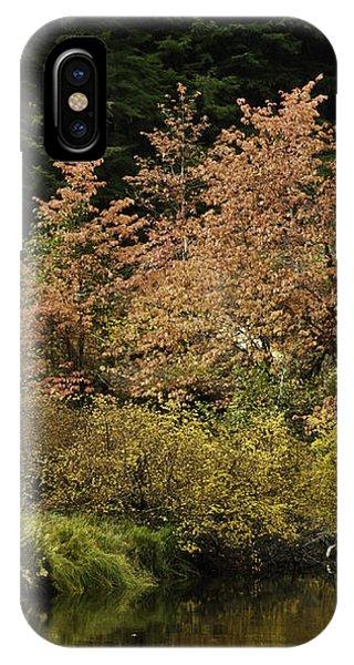 Autumn Spectacular IPhone Case