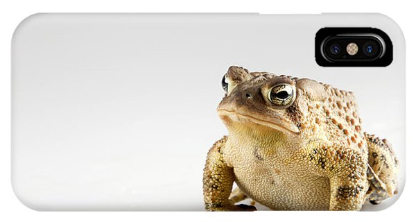 Fat Toad IPhone Case