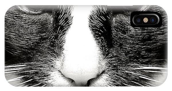 Fearless Feline IPhone Case