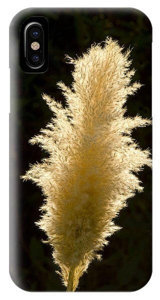 Feather Plant IPhone Case