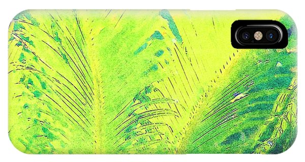 IPhone Case featuring the photograph Ferns by Donna Bentley