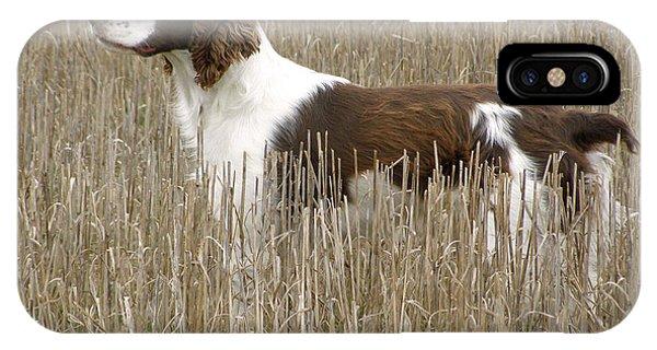 Field Bred Springer Spaniel IPhone Case