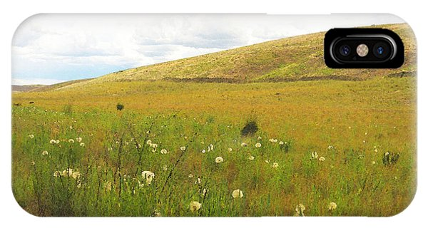 Field Of Dandelions IPhone Case