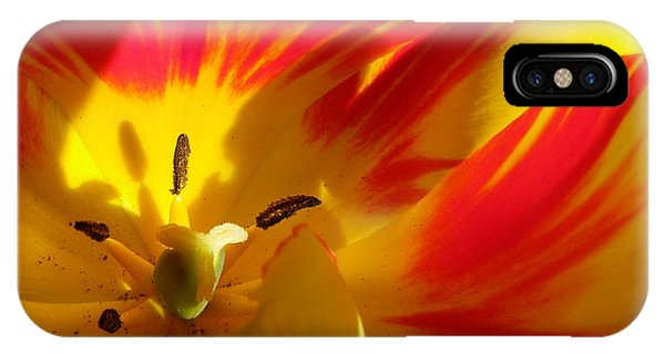 Fire Tulip IPhone Case