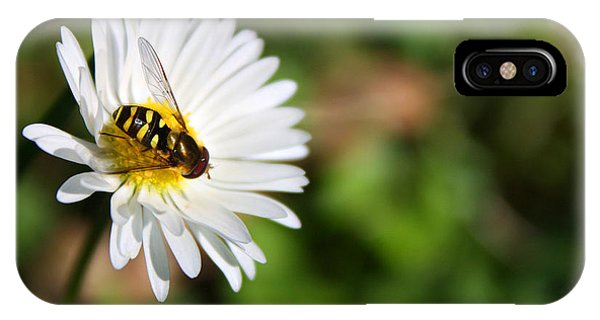 First Spring Bee IPhone Case