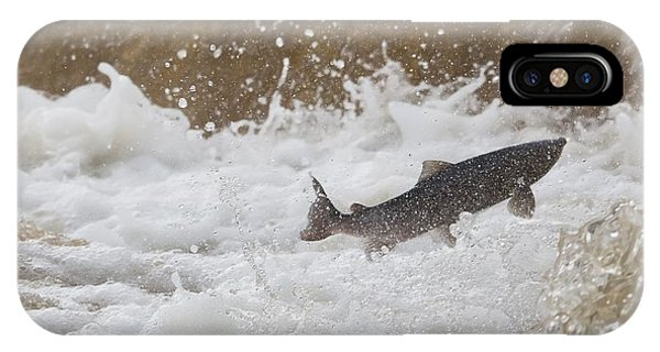 Fish Jumping Upstream In The Water IPhone Case