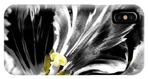 Cool iPhone Case - Flaming Flower 1 by James Granberry
