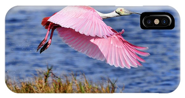 Flight A Roseate Spoonbill IPhone Case