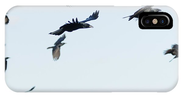Flock Of Crows IPhone Case