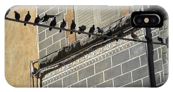 Florentine Pigeons IPhone Case