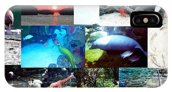 Florida Collage 001 IPhone Case
