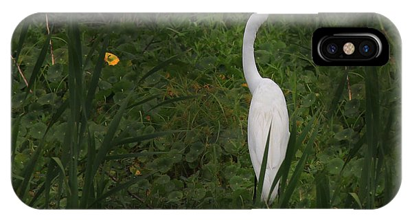 Florida Egret IPhone Case