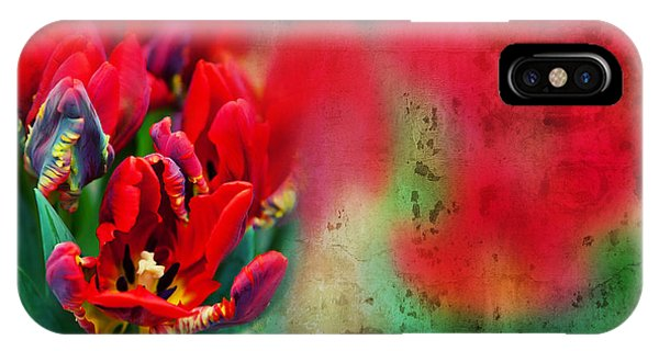IPhone Case featuring the photograph Flowers by Ariadna De Raadt