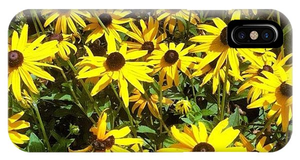 Bright iPhone Case - Flowers by Lea Ward