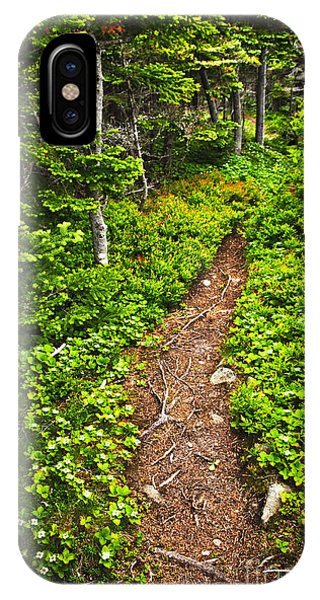 Hiking Path iPhone Case - Forest Path In Newfoundland by Elena Elisseeva