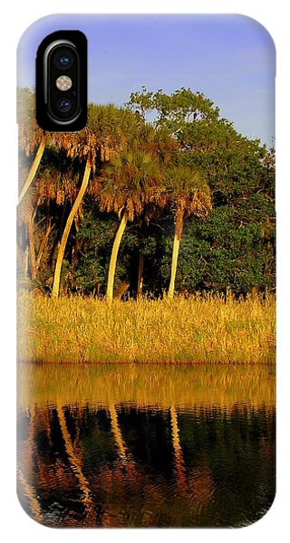 Four Palms Reflecting In Myakka Lake IPhone Case