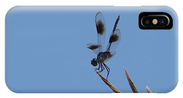 Four Spotted Pennant Phone Case by Bruce W Krucke
