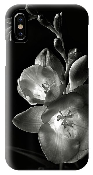 Freesia In Black And White IPhone Case