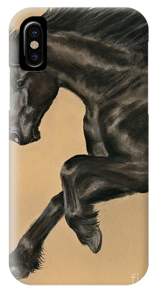 Friesian Portrait IPhone Case
