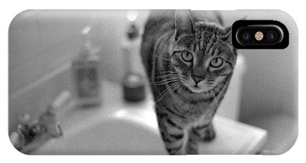 Fritz The Cat Brooklyn Ny 2003 IPhone Case