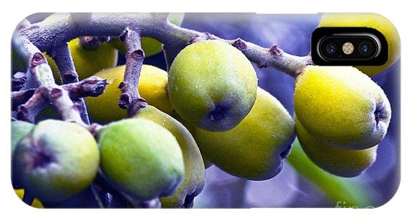 Sicilian Fruits IPhone Case