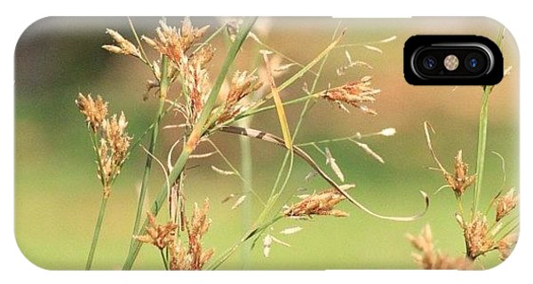 Political iPhone Case - Garden Grass From A Different Angle, By by Ahmed Oujan