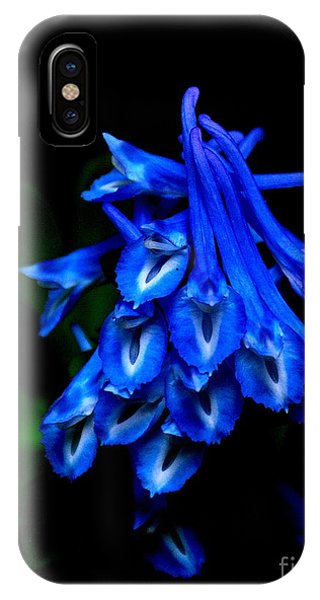 Garden Jewel IPhone Case
