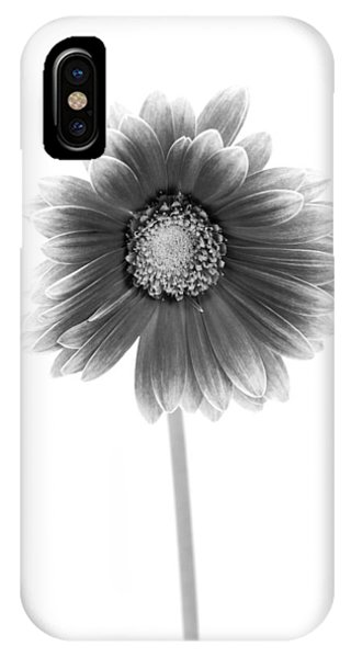 Gerbera In Black And White IPhone Case