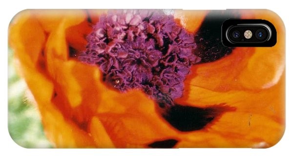 Giant Orange Poppy IPhone Case