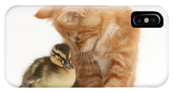 Baby Duck iPhone Cases (Page #7 of 39) | Fine Art America