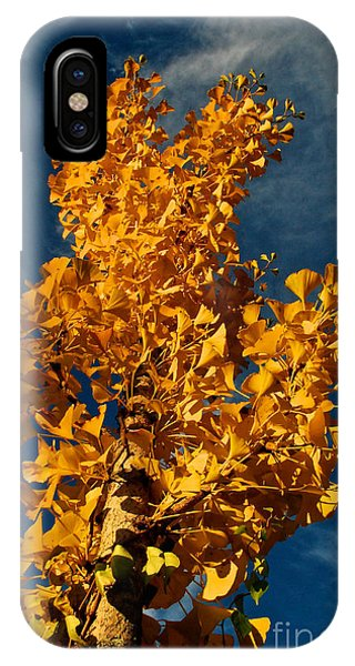 Gingko To The Sky IPhone Case