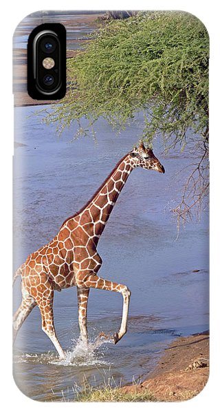 Giraffe Crossing Stream IPhone Case