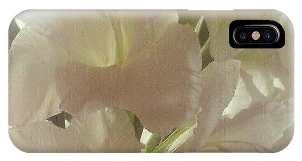 Petals iPhone Case - Gladioli by Kimberley Dennison