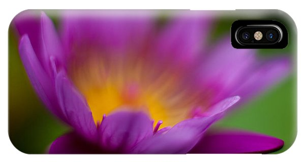 Lily iPhone Case - Glorious Lily by Mike Reid