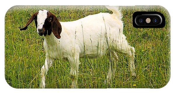 Goat Fun IPhone Case