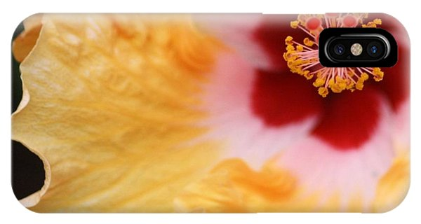 Golden And Crimson Hibiscus IPhone Case