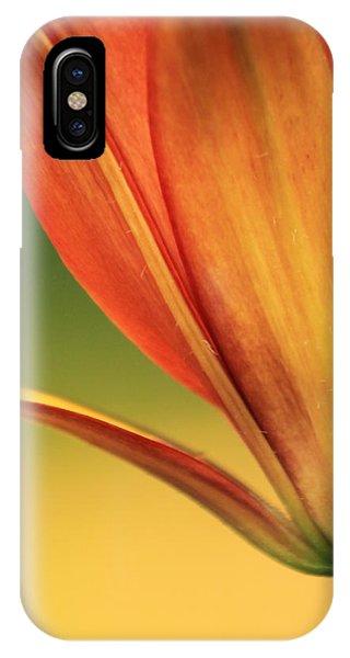 Graceful IPhone Case
