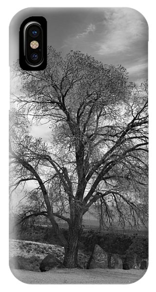 Grand Canyon Life Tree IPhone Case