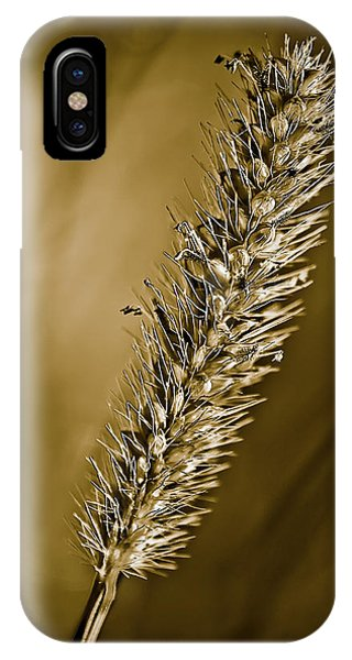 Grass Seedhead IPhone Case