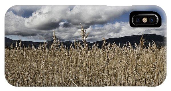 Wilsons Promontory iPhone Case - Grassland by Douglas Barnard