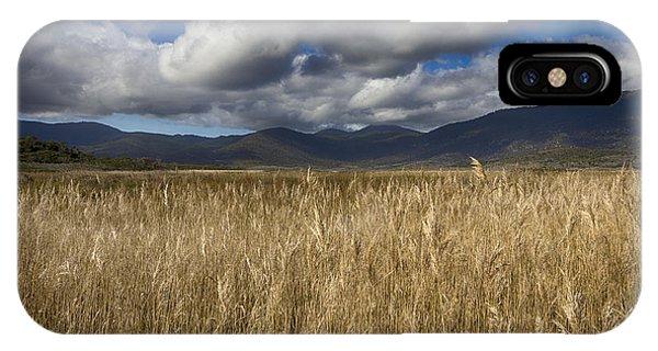 Wilsons Promontory iPhone Case - Grassland V2 by Douglas Barnard