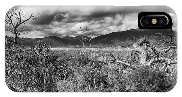 Wilsons Promontory iPhone Case - Grassland V3 by Douglas Barnard